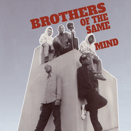 [PIG127LP] Brothers Of The Same Mind